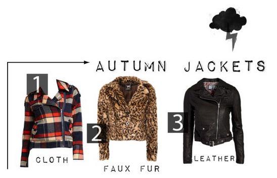 Seeking a new jacket for fall