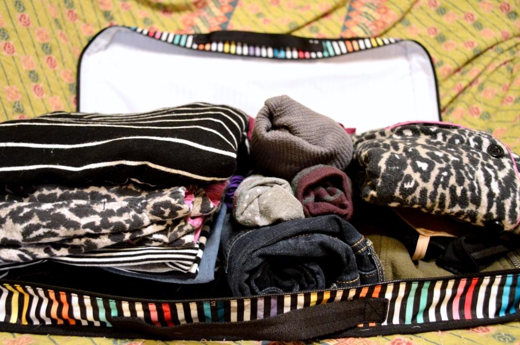 LeSportSac Travel Style - Weekender Bag (11)