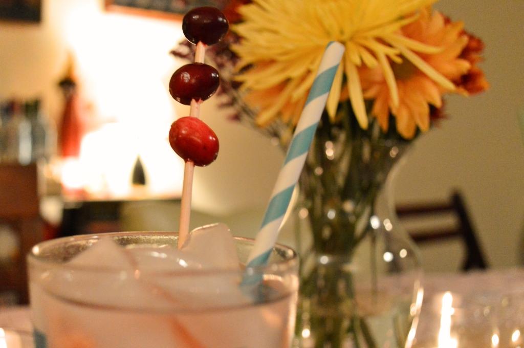 Thanksgiving Cocktail Recipe - Cranberry Apple - The Festive Cran-Apple Fizz (4)