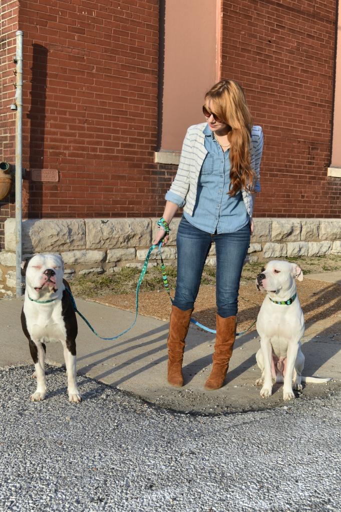Bulldogs and Denim Bloopers (1)