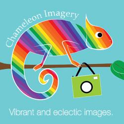 Chameleon Imagery
